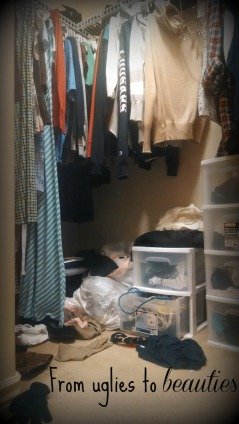 Speaking of the uglies in my closet... here in my closet currently. :)